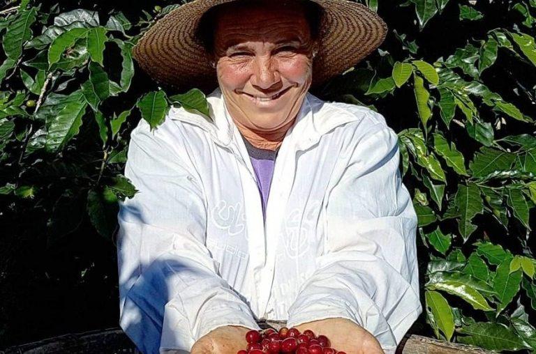 Kawa speciality – czym charakteryzują się ziarna wysokiej jakości?