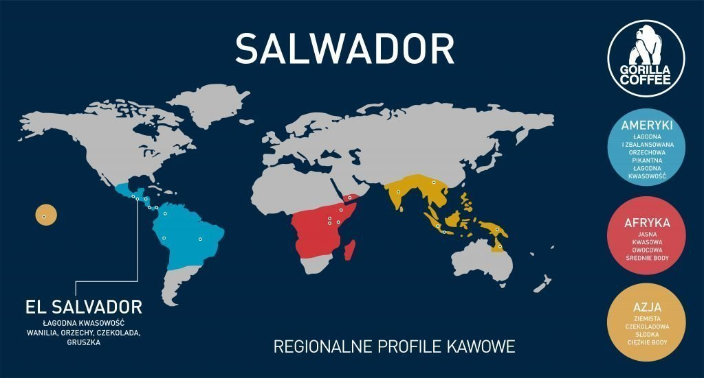 kawa salwador gorilla coffee