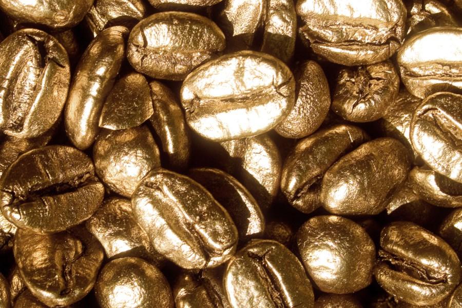 Najdroższa kawa świata – to Kopi Luwak?